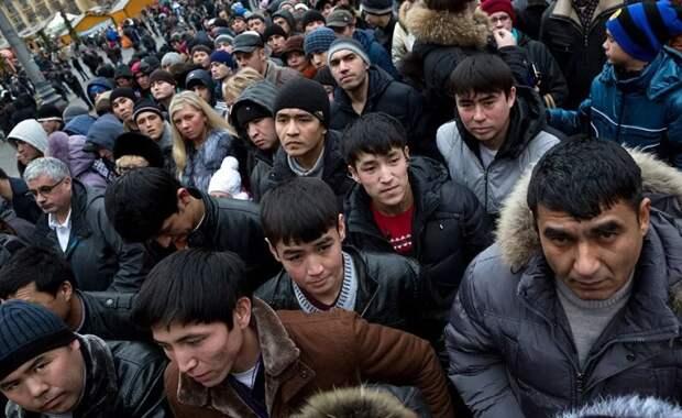 Жизнь без мигрантов. Сможет ли Россия без них обойтись?
