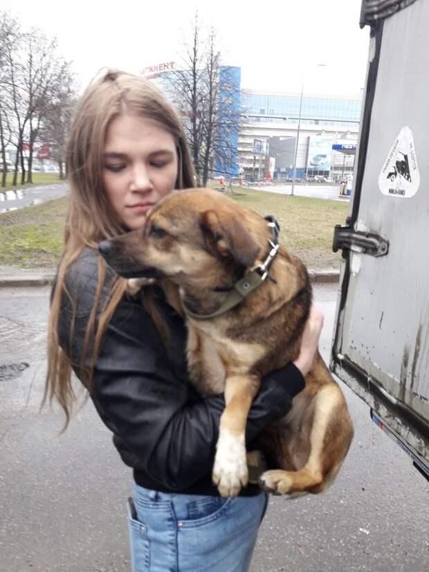 От страха она «впечатывалась» в землю… История крохи, увезённой в Финляндию, брошенной и… счастливой!