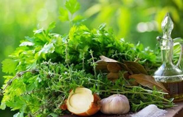 Рецепты народной медицины. Лечение травами