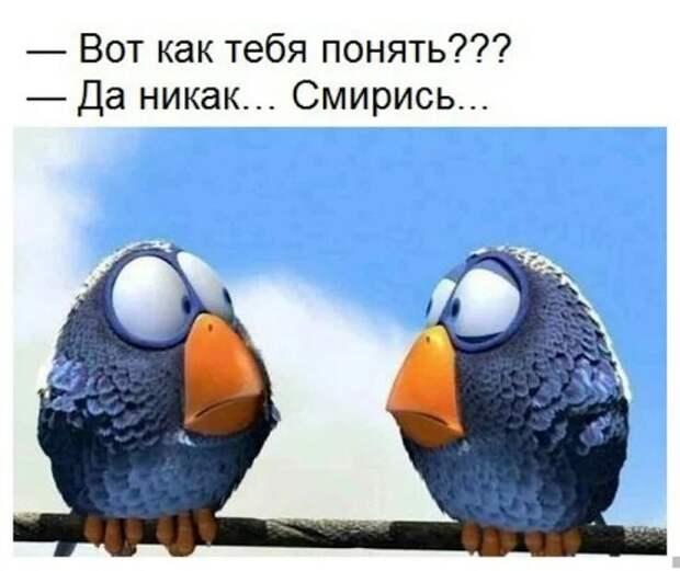 Перевод речи Путина в Давосе на понятный язык