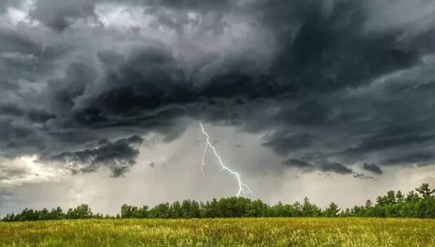 МЧС предупредило жителей Подмосковья о грозе, граде и шквалистом ветре в воскресенье
