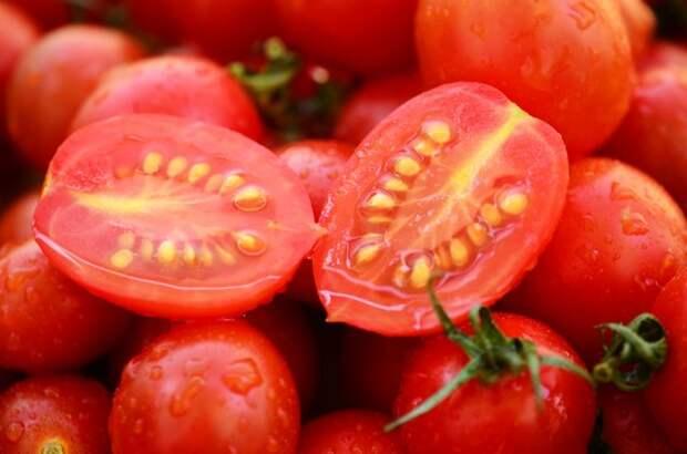 Как правильно собрать семена помидоров