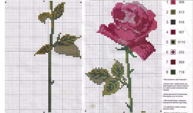 Скачать бесплатную схему розы для вышивки бисером на одежде (на брюках) .