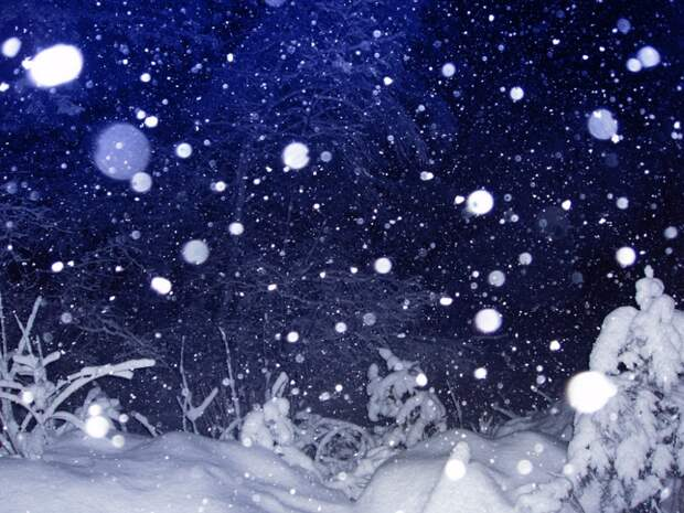 Полякова Татьяна. И падал снег.