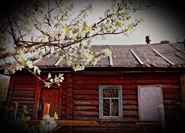У мужа дом и участок в деревне, 4 года не были там. Приехали туда посмотреть, а внутри живет семья.