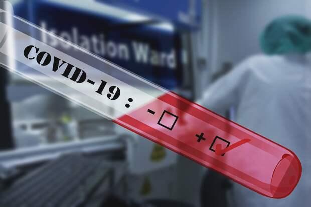Сколько ложных тестов на коронавирус делают в России