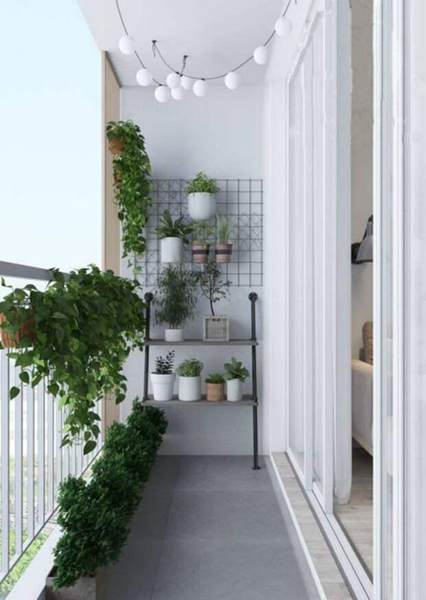 Узкий балкон в минималистичном стиле. | Фото: Pinterest.