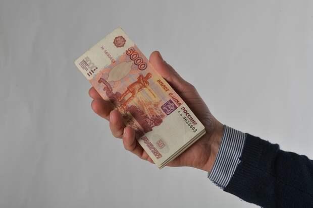 ВЦИОМ: 36% россиян считают налоги чрезмерными