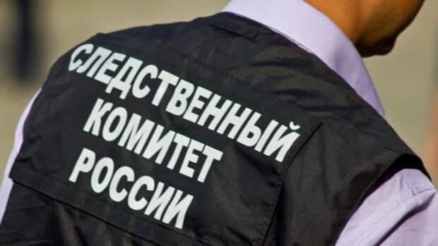 Ушедшую из дома 14-летнюю девушку нашли в Тверской области