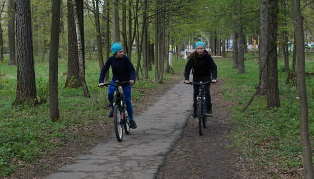 В парке «Дубрава» Подольска проведут зарядку для жителей 12 октября