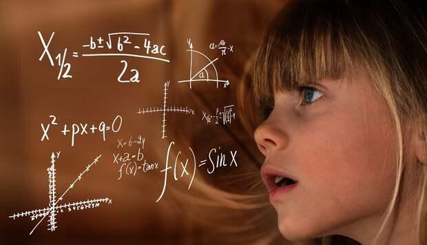 В Бабушкинском парке в День города гости займутся математическими задачами