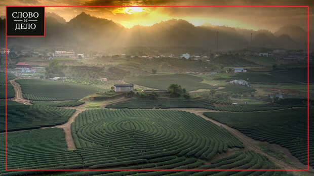 Названы три отличия европейских фермерских хозяйств от российских