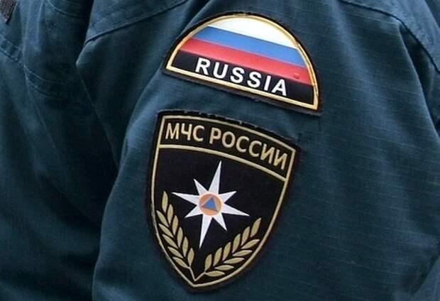 МЧС Крыма не выявило фактов гибели животных и птиц в районе Армянска