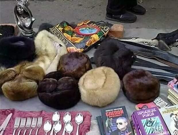 Усатые мастера маскировки камуфляж, коты, кошки, маскировка, найди кота, прикол, спрятались, юмор