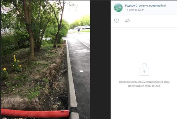 На улице Маршала Катукова забыли закрыть грунтом корни деревьев