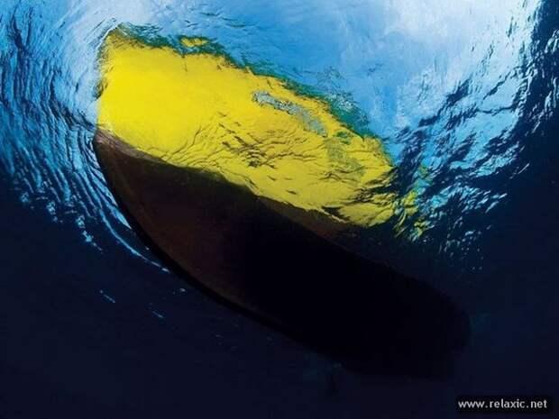 underwater_036