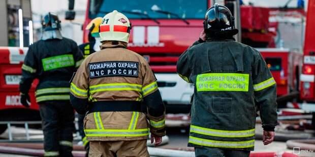 Пожарные ликвидировали загорание мусора на Дворцовой аллее