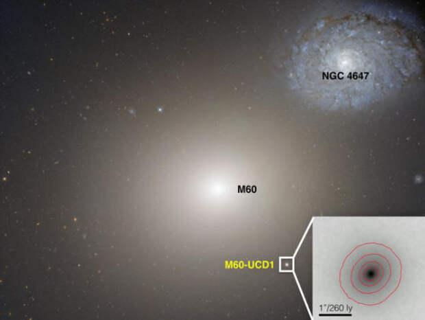 Галактика M60