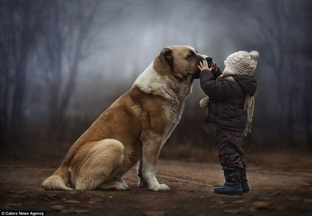 Уникальная дружба