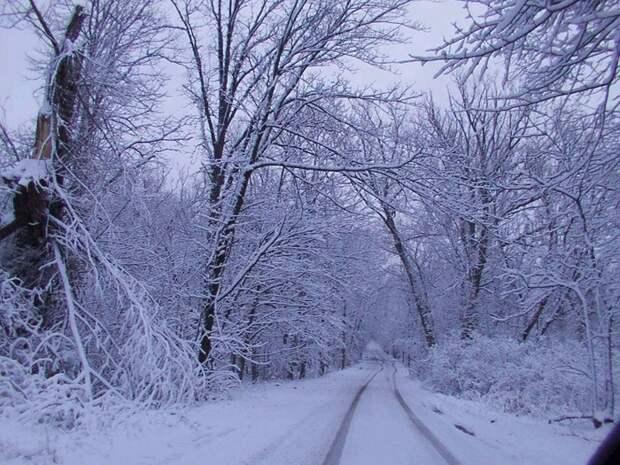 Winter road scene (700x525, 172Kb)