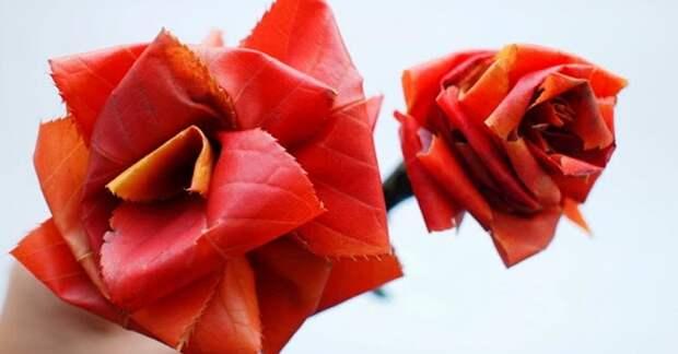 Превратите скучные осенние листья в невероятно красивые розы