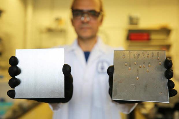 Масло против бактерий: ученые рассказали о неожиданной пользе масла