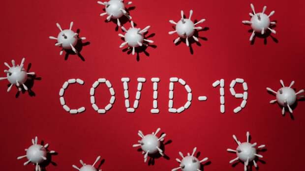 Партия коронавируса включает заднюю. Надолго ли?