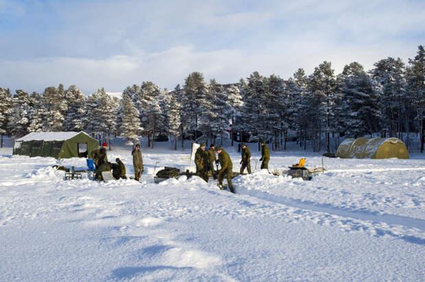 Военные учения стран НАТО Cold Response 2020 в Норвегии