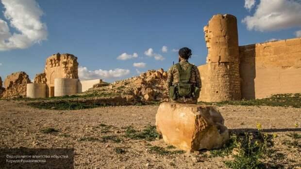 Правительство Асада помогает властям Хомса восстановить торговлю на рынках