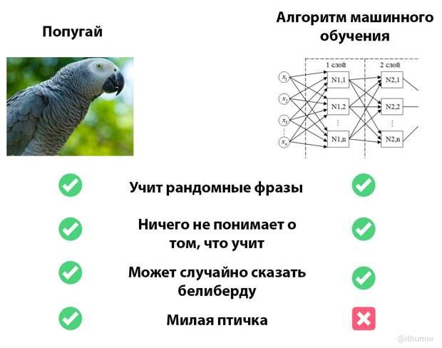 Возможно, это изображение (текст «попугай алгоритм машинного обучения 1 слой слой N1,1 N2,1 N1,2 N2,2 N1,n N2,n учит рандомные фразы ничего не понимает o том, что учит может случайно сказать белиберду милая птичка @ithumor»)