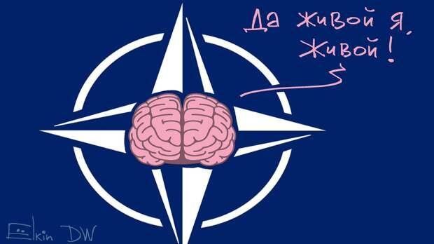 Дерзкое заявление на саммите НАТО: у них новый враг?