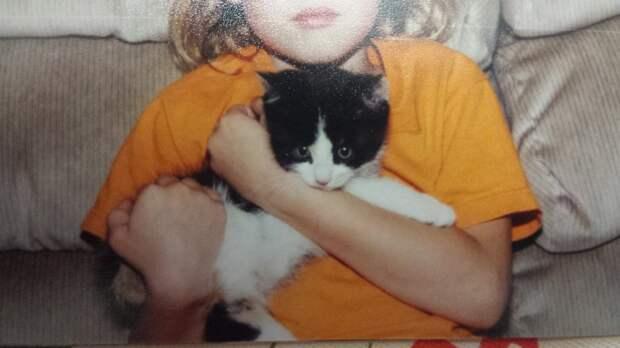 Вот уже 18 лет эта кошка лучший друг своей хозяйки