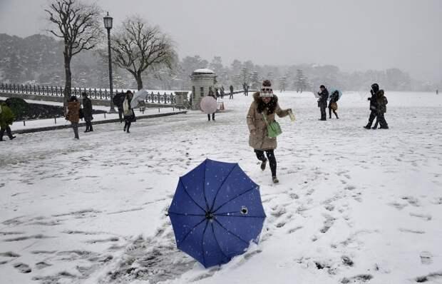 ТАСС: В Японии свыше 1,4 тыс. домов остались без электричества из-за сильных снегопадов