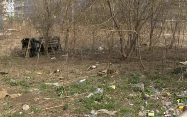 В Рязани территорию возле «Дикси» в Недостоеве завалили мусором