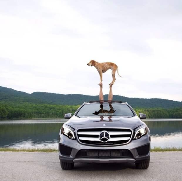 Пять причин купить Mercedes-Benz, вместо BMW