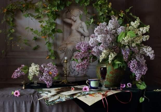 Фантастически красивые натюрморты современных фотохудожников. Часть 1