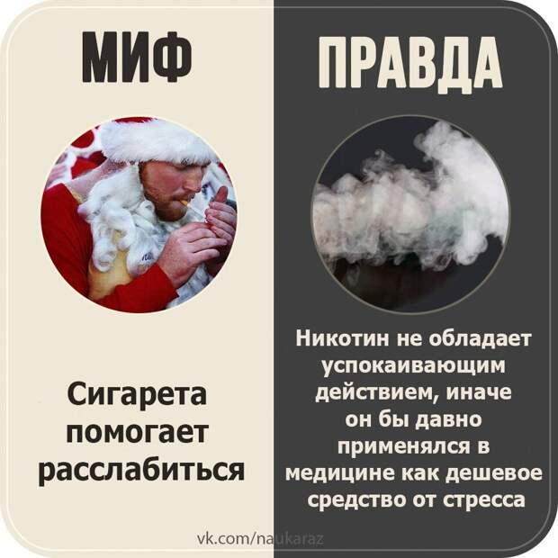 Мифы и правды.