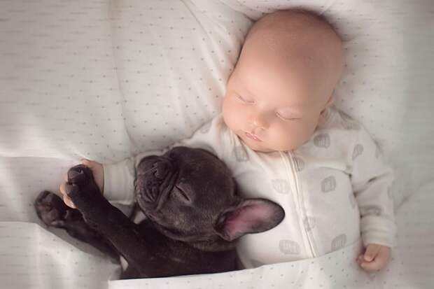 Малыш и щенок родились в один день и теперь думают, что они братья