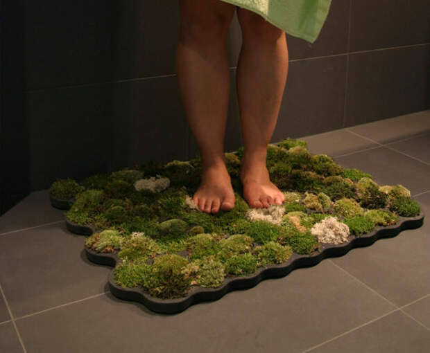 Коврик для ванной комнаты из настоящего мха.