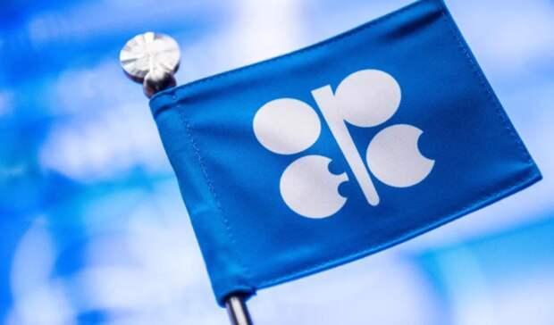 Состояние рынка иисполнение сделки ОПЕК+ оценят сегодня