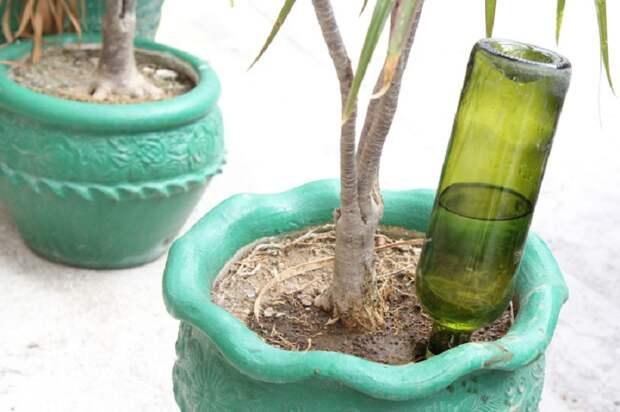 Лайфхаки для дома: 75 реально полезных идей для домашнего интерьера