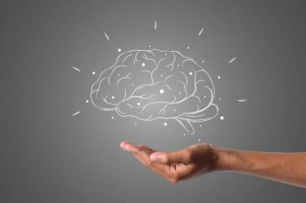 brain-4961452_1280-1024x682 Сотрясение головного мозга: первая помощь