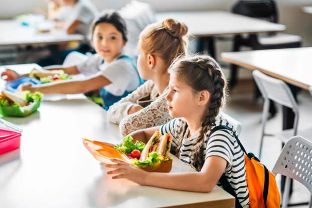 Родители детей, страдающих хроническими заболеваниями, смогут получать компенсацию за школьные обеды