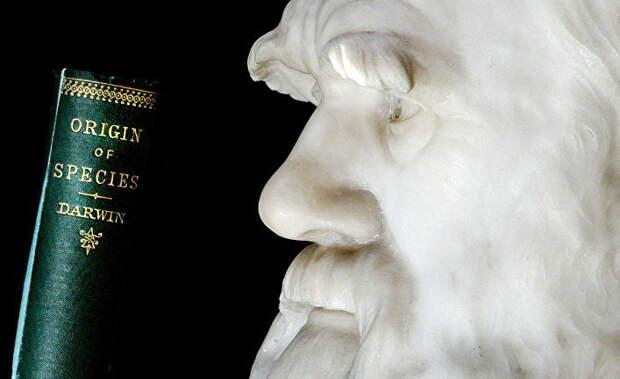 Sasapost (Египет): брешь в теории эволюции. Тайна происхождения покрытосеменных растений, поставившая Дарвина в тупик!