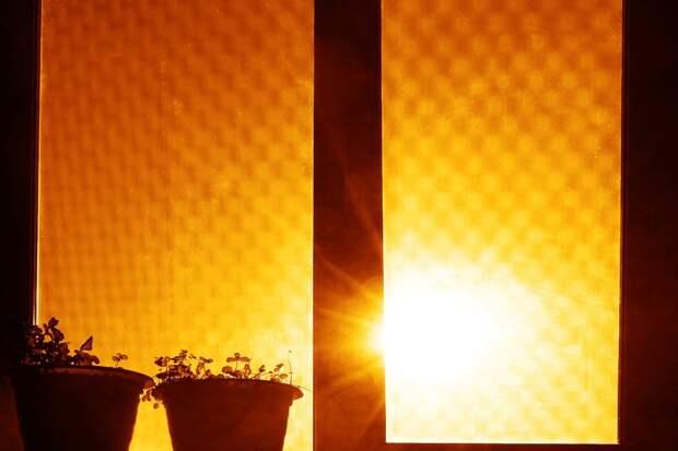 Чем закрыть окно от палящего солнца