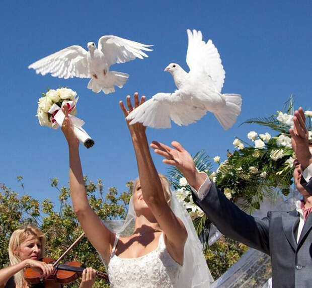 Что подарить на годовщину свадьбы родителям, друзьям или самим себе