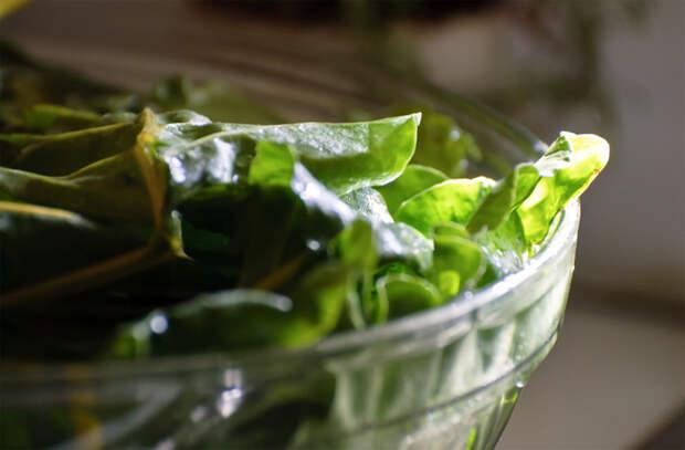 Зелень для салата: особенности подготовки