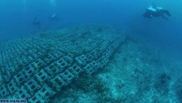 Загадочные сооружения под водой, которые назвали дорогой в Атлантиду и предсказание Кейси