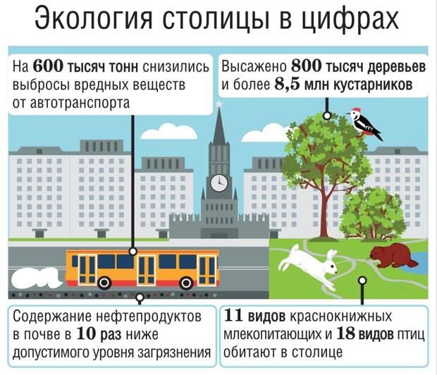 Инфографика / Департамент природопользования