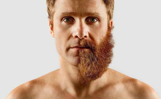 Почему женщинам нравятся бородатые мужчины, но не долго